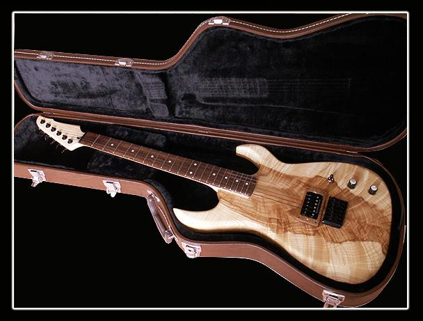 Foto 1 - Kytara Fanatic Guitars